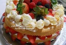 Naked-cake-nalva